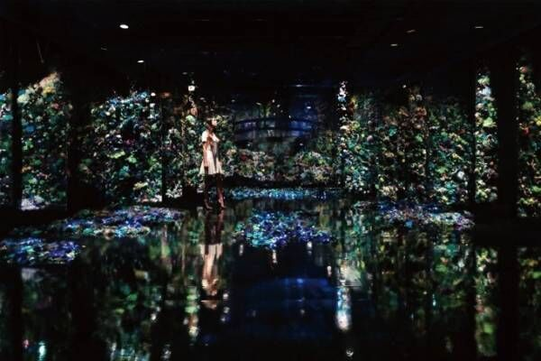 増田セバスチャン×クロード・モネ≪睡蓮の池≫、大型インスタレーションをポーラ美術館で