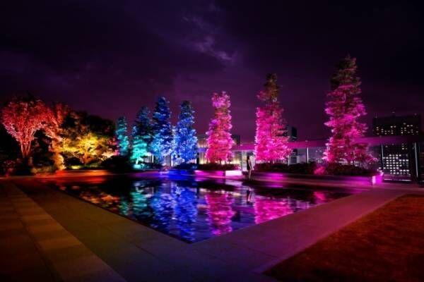 チームラボのデジタルアート「呼応する木々」ギンザ シックス屋上庭園に、光と音が連なる幻想空間