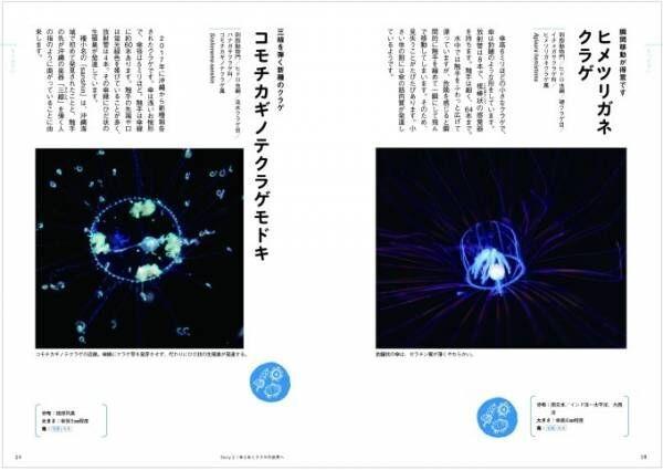 """書籍『ときめくクラゲ図鑑』幻想的な写真とともに""""謎多き""""クラゲに迫る"""
