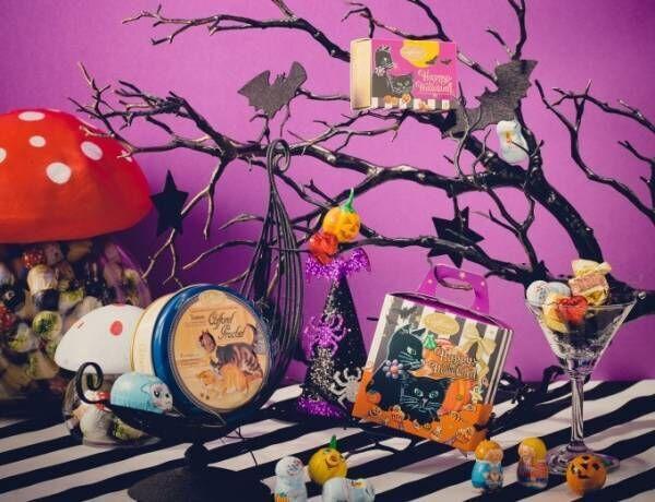 """カファレルのハロウィン限定チョコアソート、""""黒猫&おばけカボチャ""""パッケージのジャンドゥーヤチョコ"""
