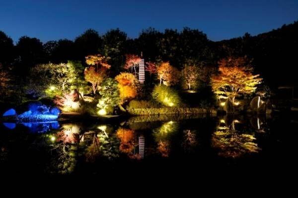 """「秋の庭園ライトアップ」東京・目白庭園で、モミジが池に映り込む幻想的な""""鏡映し"""""""