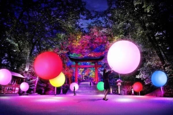 大分で「宇佐神宮 光の祭 Art by teamLab」国宝が光のデジタルアート空間に
