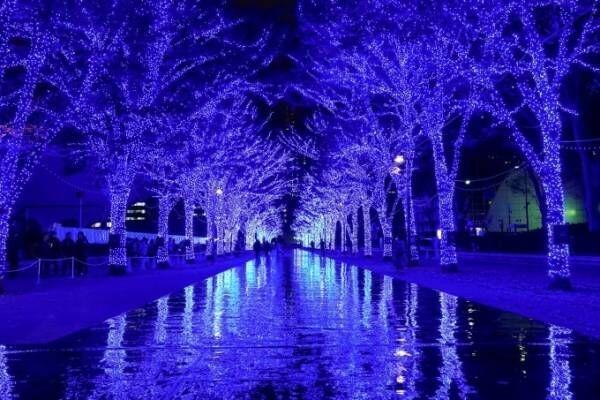 イルミネーション「青の洞窟 SHIBUYA」渋谷公園通り~代々木公園ケヤキ並木で、ピアノ生演奏も
