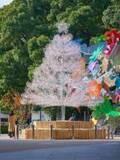 東京ガーデンテラス紀尾井町のイルミネーション、約4万2千粒のクリスタルガラスを飾ったクリスマスツリー