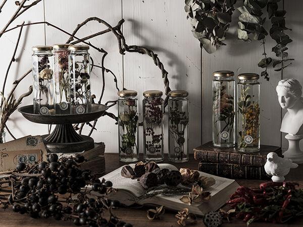 「ボタニカル蚤の市 in ハロウィン」が渋谷で - 植物がテーマの雑貨や家具、限定フード&ドリンクも