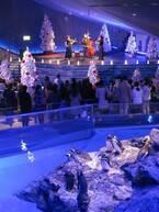 すみだ水族館「ペンギンと過ごすクリスマス」特別仕様のペンギンショー、新日本フィル×ペンギンの演奏会も