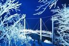 北海道「星野リゾート トマム」霧氷のライトアップ - 闇夜に煌めく霧氷に360度囲まれるテラス