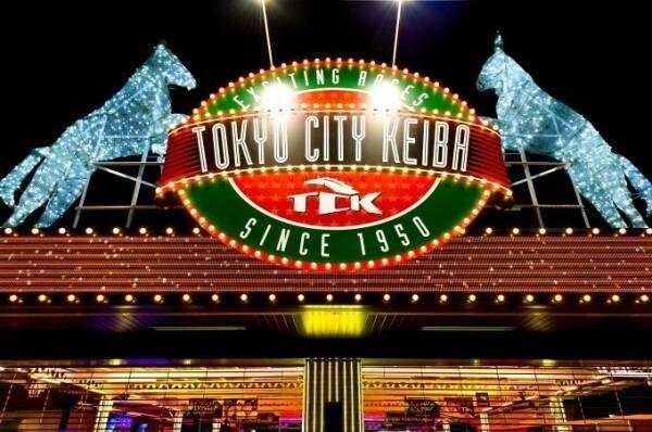 大井競馬場で「TOKYO MEGA ILLUMINATION」開催、関東最大級の約800万球規模
