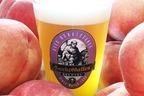 サンクトガーレンのフルーツビール「7種の桃のエール」過去最高量500キロの桃を使用した贅沢な甘み