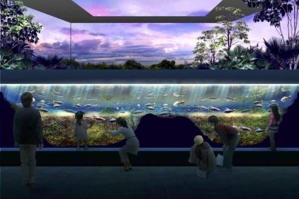 「ミズー 川崎水族館」20年夏オープン、日本初となる駅前商業施設内の水族館が「川崎ルフロン」に
