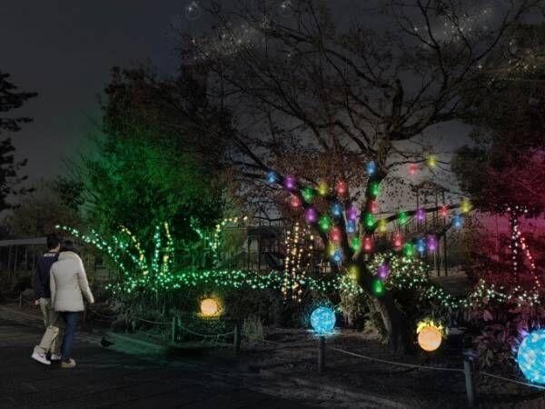 """ライトアップイベント「京都・冬の光宴」梅小路公園内で、LED約3万球で""""星くずの架け橋""""を表現"""