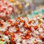 大阪市初「リンツ ショコラ カフェ」が天王寺ミオにオープン