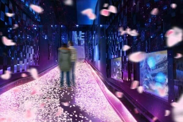 """すみだ水族館「桜とクラゲ」舞い散る""""桜""""映像とクラゲが一体化、人の動きで花びらが舞う演出も"""