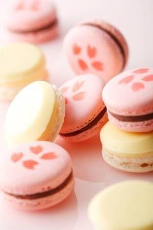 """ホテルニューオータニ""""桜""""モチーフの「紅白マカロン」こしあん&しろあんと桜の花びらをサンド"""