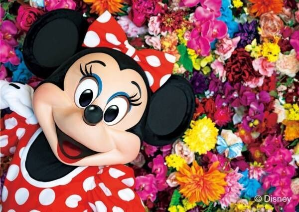 写真家・蜷川実花が撮影したミッキーと仲間たち、ディズニープリンセスを1冊の作品集に