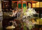 「六角堂 夜の特別拝観」頂法寺境内をライトアップ、新元号や東京五輪など祝う大作生け花も展示