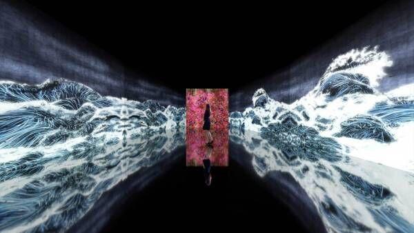"""金沢21世紀美術館でチームラボの個展 - 作品と来場者が一体化する""""波""""や""""花""""のインスタレーション"""