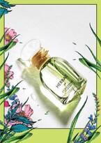 """ロクシタン""""緑豊かな草原""""を想起させる「エルバヴェール」3つの緑のハーブが主役のボディケア&香水"""