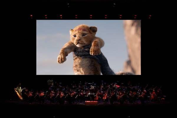 ディズニー映画『ライオン・キング』ライブ・オーケストラが東京・大阪・名古屋で - 全編を生演奏と共に
