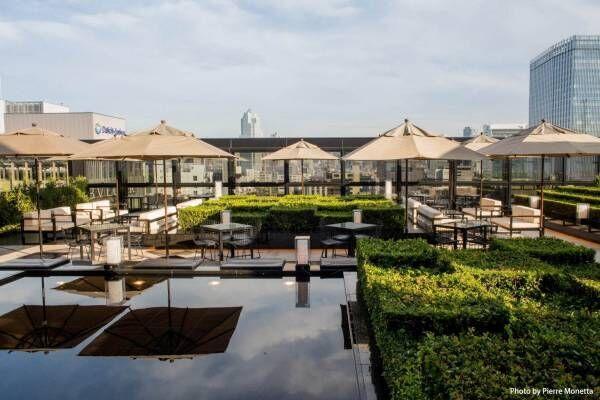 「ベージュ アラン・デュカス 東京」の屋上テラスがオープン、毎週木曜夜にはジャズ演奏も