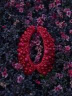 「ボタン」で作るアートジュエリー、自然の草花と組み合わせた作品をギンザシックスで展示販売