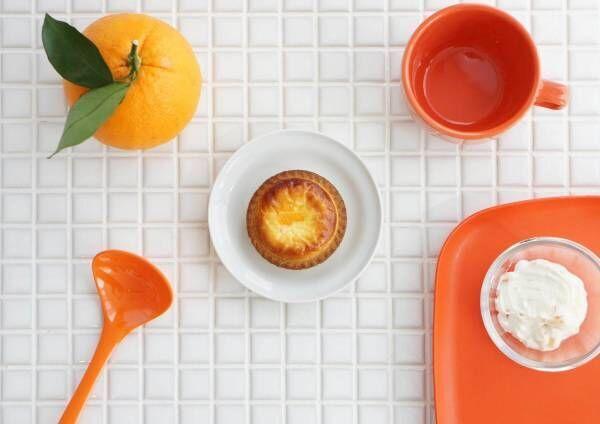 焼きたてチーズタルト専門店「ベイク」ギリシャヨーグルト×オレンジピールの夏限定チーズタルト