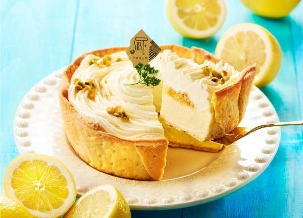 焼きたてチーズタルト専門店パブロの「レモンカスタードのチーズタルト」甘酸っぱいレモン×濃厚カスタード