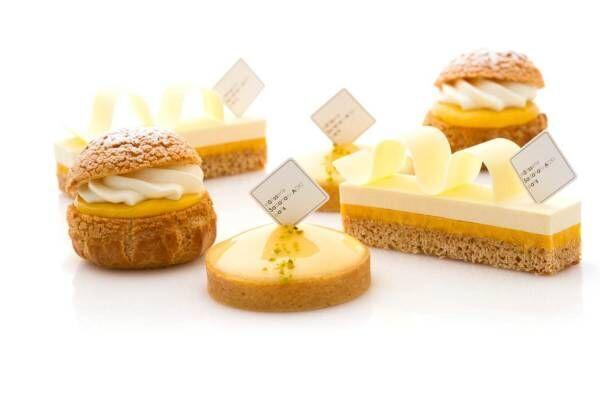 サダハル・アオキよりレモン&パッションフルーツの夏スイーツ、爽やかな新作ソルベやシュークリーム
