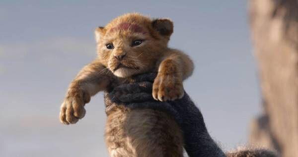 ラフォーレミュージアム原宿で映画『ライオン・キング』の展覧会、約30ショップで限定アイテムも