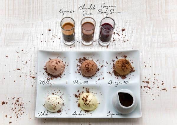 デンマーク発高級チョコレート「サマーバード オーガニック」カカオを味わう、夏限定のアイスクリーム