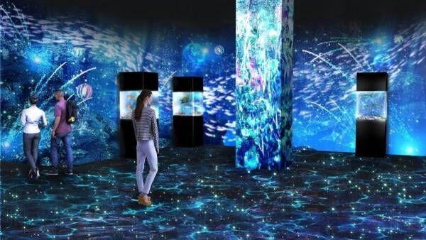 マクセル アクアパーク品川「花火アクアリウム」音×光×映像で魅せるイルカやペンギンパフォーマンス