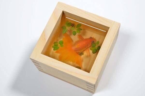 すみだ水族館「金魚♡(LOVE)展」水彩画やフェルト作品など金魚アートに彩られる展示エリア