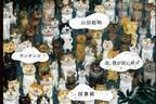 """「吉祥寺ねこ祭り2019」吉祥寺で - """"愛猫家""""による初の音楽イベントや謎解き×街歩き企画も"""