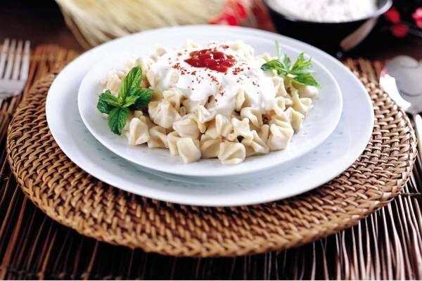 「トルコフェスティバル2019」代々木公園で開催、ケバブやトルコアイスなど多彩な料理を満喫