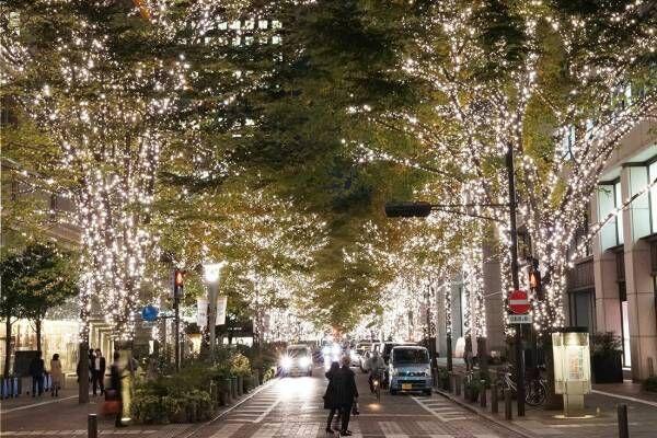 「丸の内イルミネーション2019」1.2kmの街路樹を約100万個の電球でライトアップ