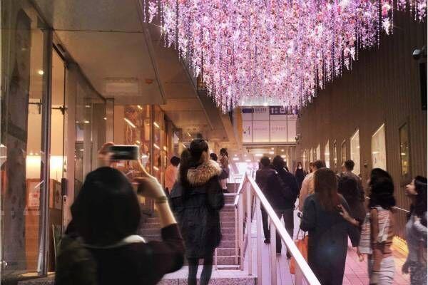 「新宿テラスシティ イルミネーション」西口ハルク~南口サザンテラスが光に包まれる