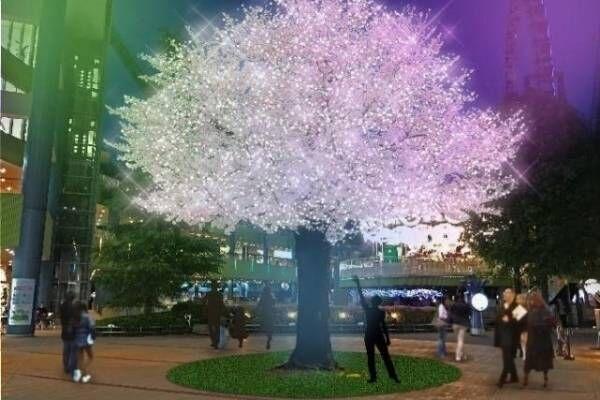 """東京ドームシティ""""和""""がテーマのイルミネーション - 満開の桜や天の川、富士山を光と音で表現"""