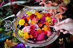 """""""食べられる花""""体験型アートイベント「おいしい花畑」池袋にて - 花&ハーブで彩るオリジナルドリンク"""
