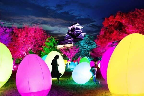 """チームラボのアート展が日本三大夜城・高知城で、""""光のアート""""で包む国の重要文化財"""
