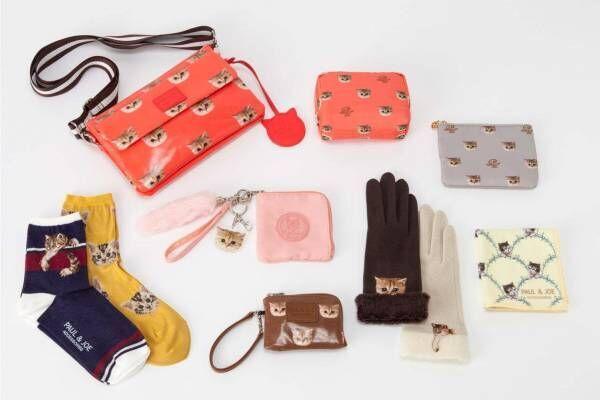 ポール & ジョー アクセソワ新作、猫が顔を出す手袋や花刺繍のウールカシミヤマフラー