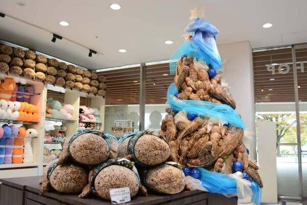 本物のようなオオサンショウウオのぬいぐるみ約100体を飾ったクリスマスツリー、京都水族館で