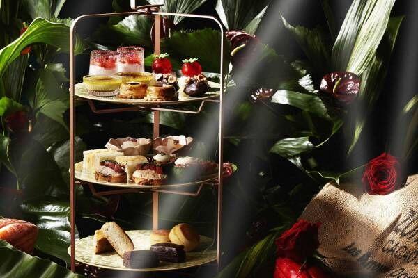 シャングリ・ラ ホテル 東京のバレンタイン「ダンデライオン・チョコレート」のアフタヌーンティーなど