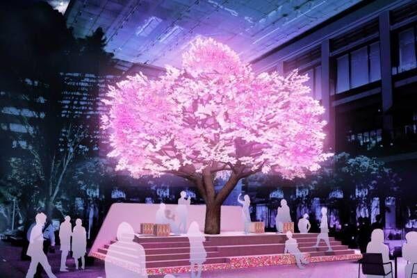 """日本橋桜フェスティバル、ピンクに輝く""""光のアート""""でお花見&桜スイーツや屋台イベントも"""