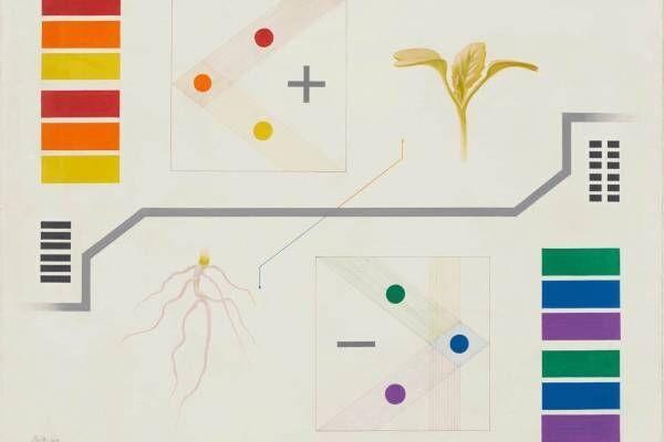 東京国立近代美術館の所蔵作品展「MOMATコレクション」バウハウス特集や日本の近現代美術約200点