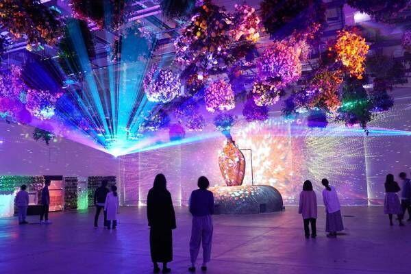 新感覚フラワーパーク「HANA・BIYORI(はなびより)」よみうりランド隣接の日本庭園に誕生