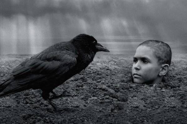 """『異端の鳥』ポーランド""""発禁の書""""が映画化、ホロコーストの本質に迫る異端の問題作"""