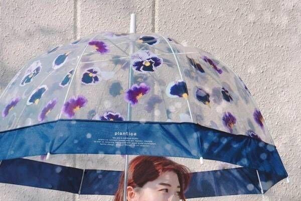"""""""花びらが宙を舞う""""ビニール傘がWpc.から、パンジーやミモザを描いたドーム型"""