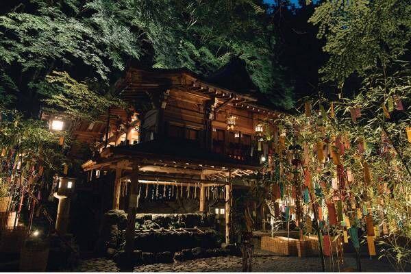 京都・貴船神社の「七夕笹飾り」色とりどりの短冊が境内に&夜間はライトアップも
