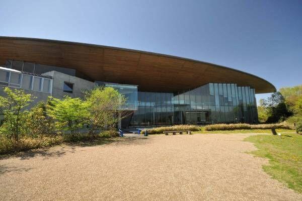 """琵琶湖博物館がリニューアルオープン、400万年前の""""琵琶湖と生き物""""の変化を辿る新展示室など"""