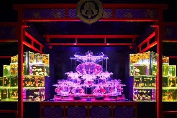 """「アートアクアリウム城 ~京都・金魚の舞~」二条城で、金魚が舞う超大型""""動く屏風絵""""など"""